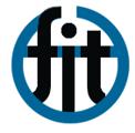 Fondazione Internazionale Trieste